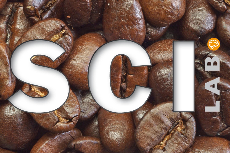 Logotyp för SCI-Lab